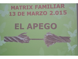 TERAPIA MATRIX FAMILIAR,